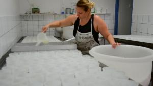 Rachel, salariée du Gaec, travaille à la transformation du lait en fromage